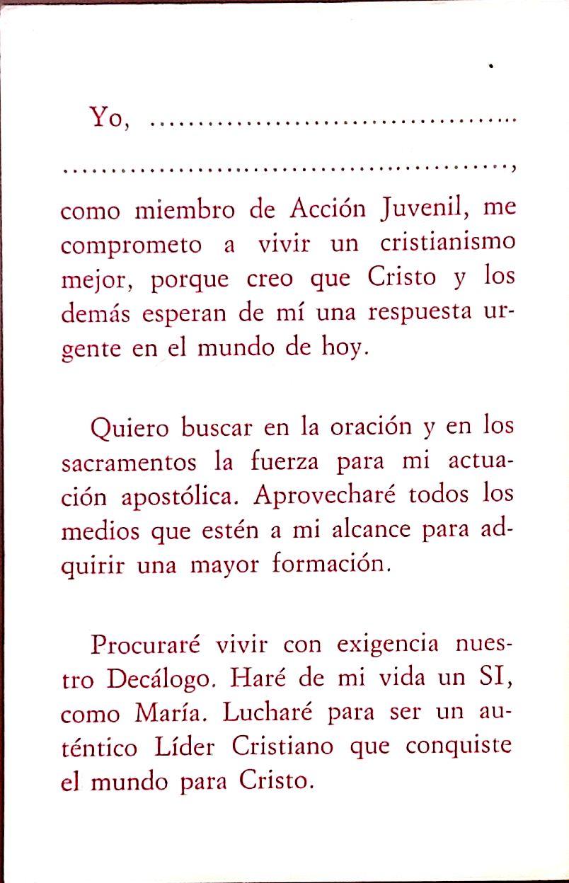 AccionJuvenil 3