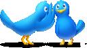 1327594802 gossip birds